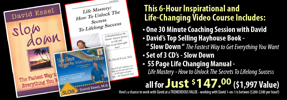 David Essel Life Mastery Video Series with David Essel