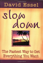 Slow Down by David Essel
